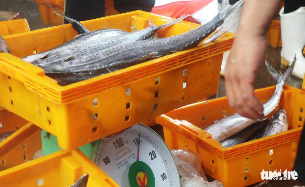 Ngư dân hối hả đưa hải sản vào bờ tránh bão số 2 - Ảnh 9.