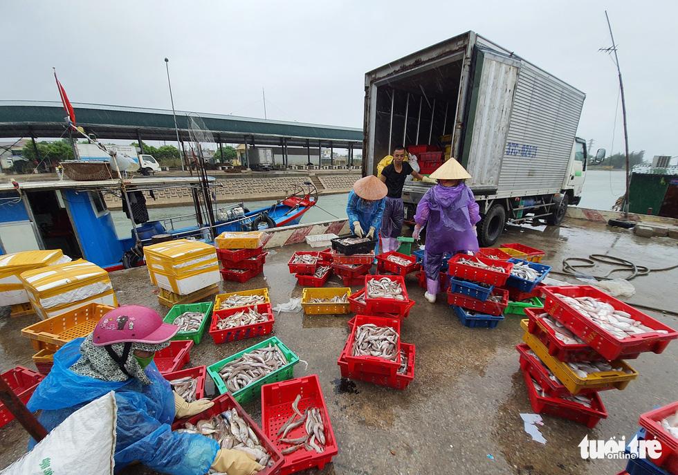 Ngư dân hối hả đưa hải sản vào bờ tránh bão số 2 - Ảnh 6.