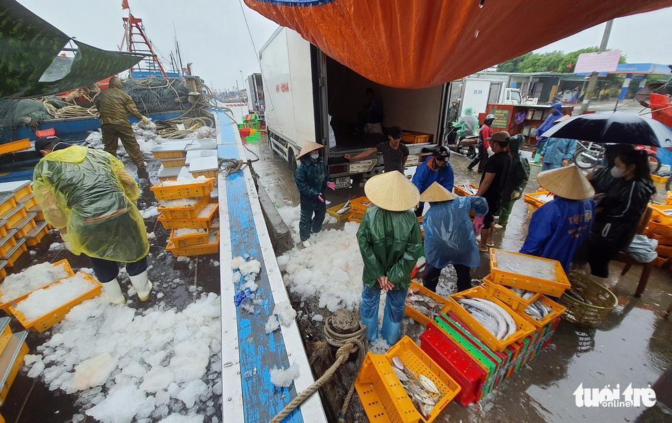 Ngư dân hối hả đưa hải sản vào bờ tránh bão số 2 - Ảnh 4.