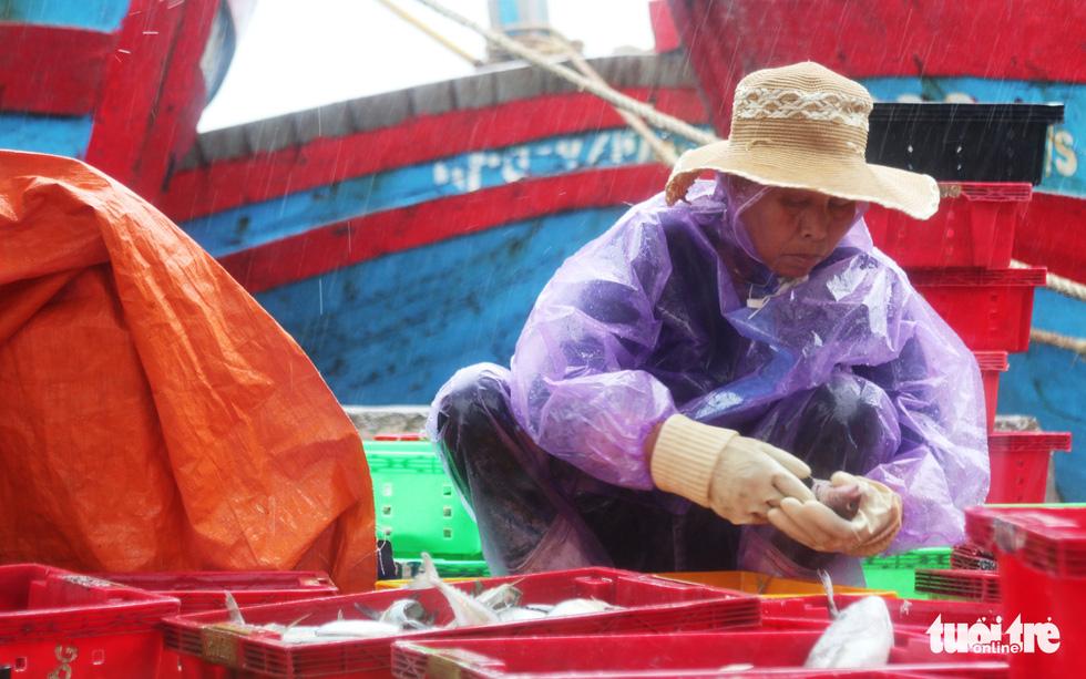 Ngư dân hối hả đưa hải sản vào bờ tránh bão số 2 - Ảnh 5.