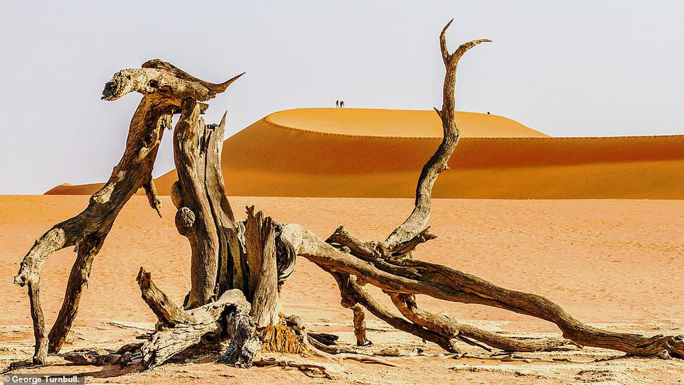 Mùa dịch ở nhà và ngắm thế giới tươi đẹp qua ống kính National Geographic Traveller - Ảnh 4.