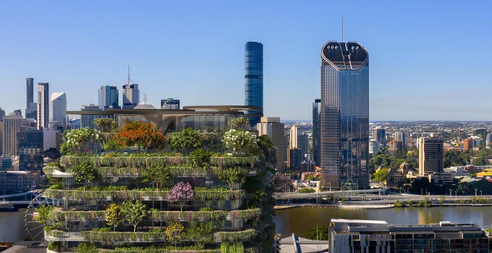 Xây chung cư cho hơn 20.000 cây xanh - Ảnh 5.