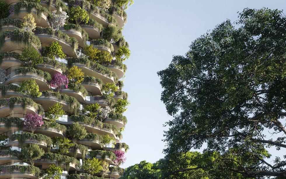Xây chung cư cho hơn 20.000 cây xanh - Ảnh 6.