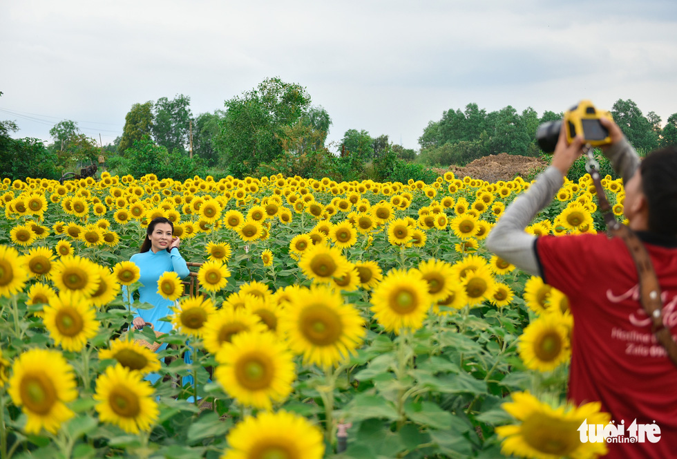 Thỏa thích tung tẩy giữa cánh đồng hoa rực rỡ tại quận 9 - Ảnh 6.