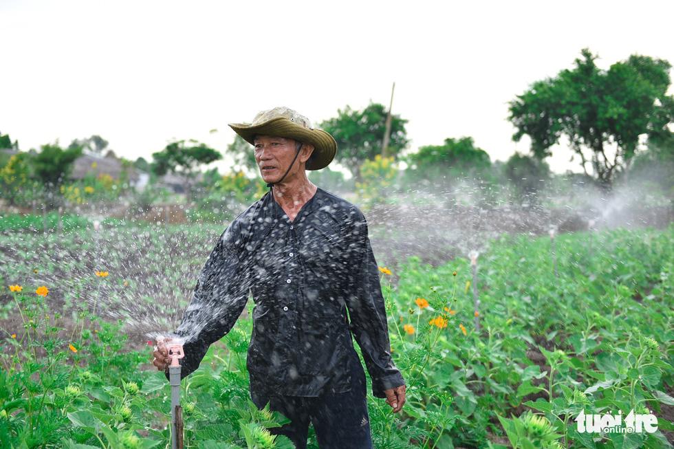 Thỏa thích tung tẩy giữa cánh đồng hoa rực rỡ tại quận 9 - Ảnh 10.