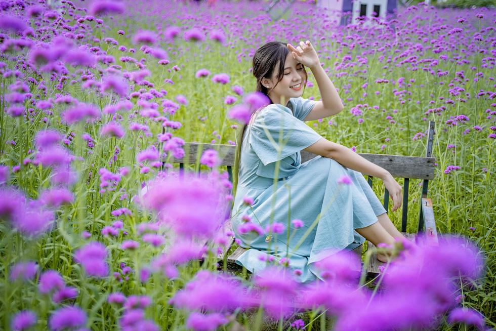 Cánh đồng hoa oải hương thảo đầu tiên tại Hà Nội hút hồn du khách - Ảnh 6.
