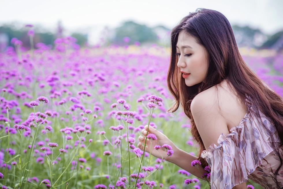 Cánh đồng hoa oải hương thảo đầu tiên tại Hà Nội hút hồn du khách - Ảnh 4.
