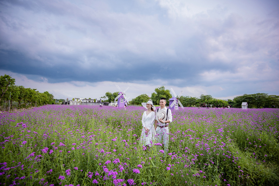 Cánh đồng hoa oải hương thảo đầu tiên tại Hà Nội hút hồn du khách - Ảnh 7.