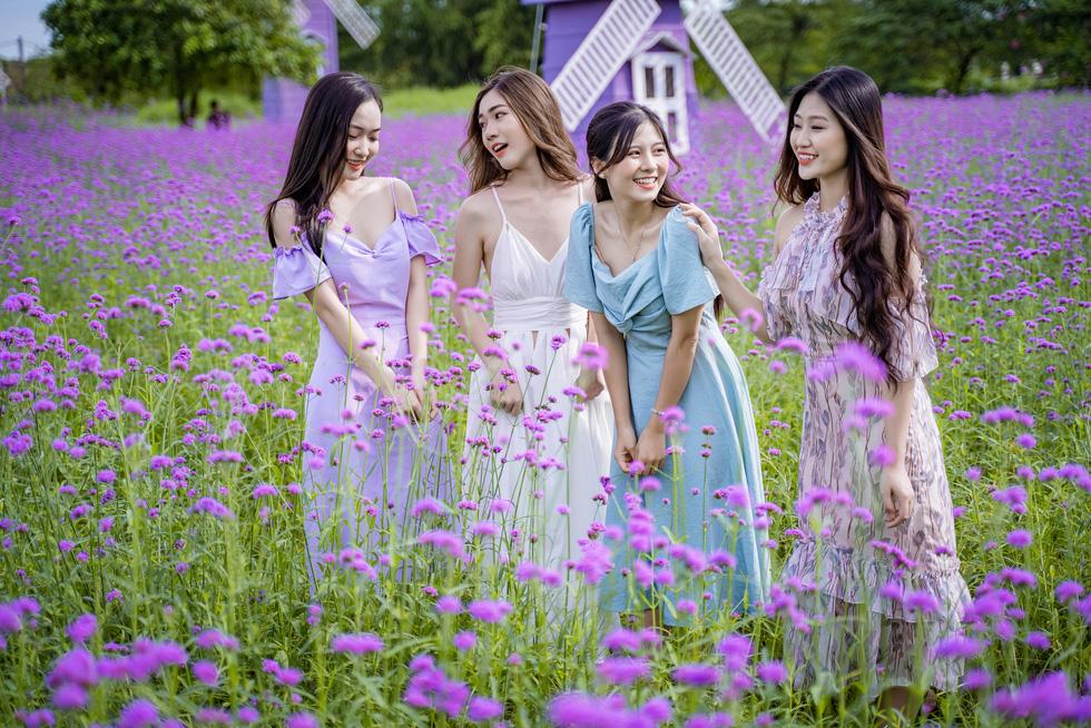 Cánh đồng hoa oải hương thảo đầu tiên tại Hà Nội hút hồn du khách - Ảnh 3.