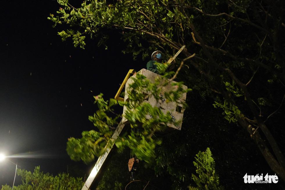Đà Nẵng khẩn trương cắt tỉa cây xanh trước giờ bão số 5 đổ bộ - Ảnh 3.