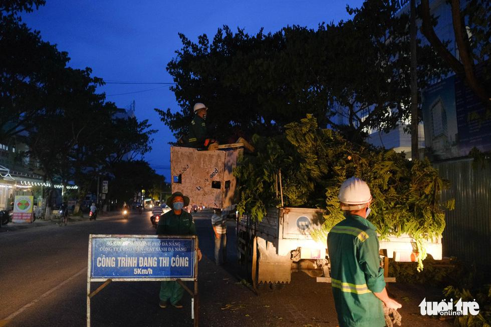 Đà Nẵng khẩn trương cắt tỉa cây xanh trước giờ bão số 5 đổ bộ - Ảnh 4.