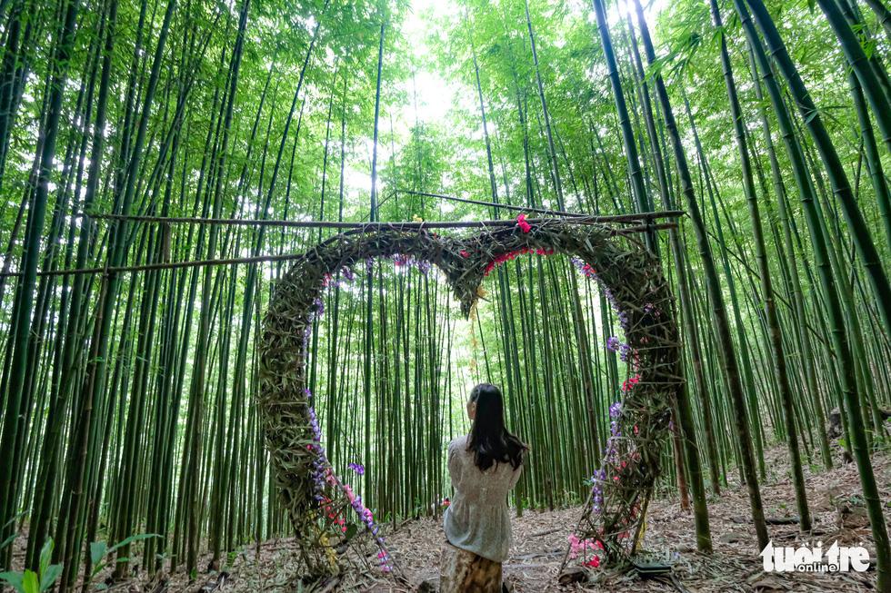 Lạc vào rừng trúc Mù Cang Chải đẹp như phim kiếm hiệp - Ảnh 4.