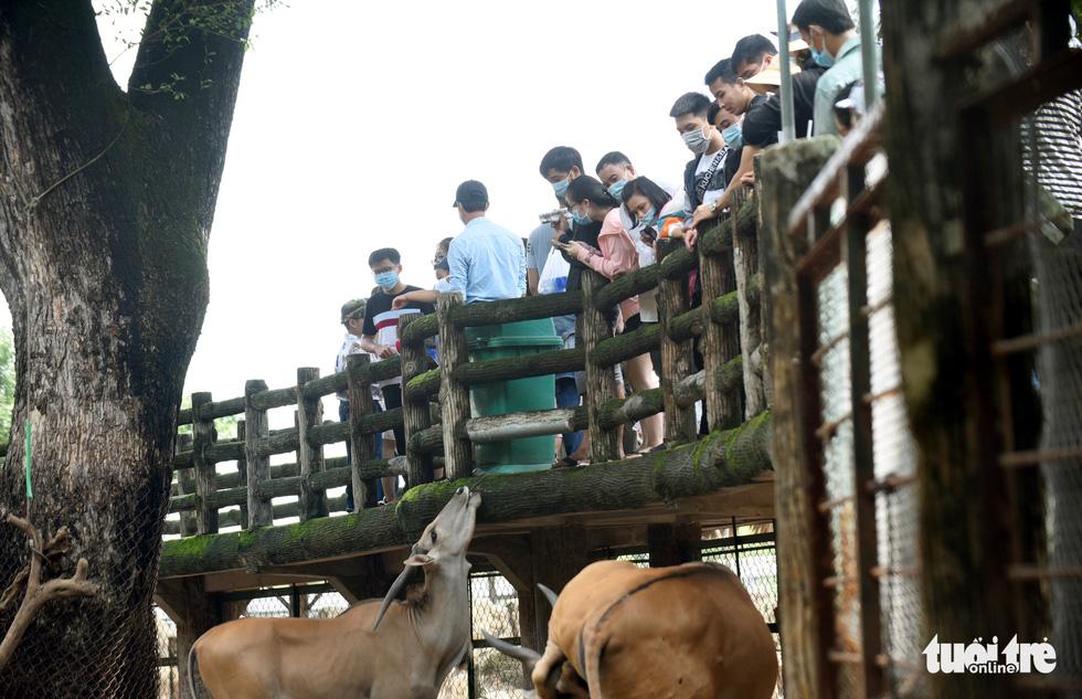 Thảo cầm viên Sài Gòn đông nghẹt khách đến chơi lễ - Ảnh 3.