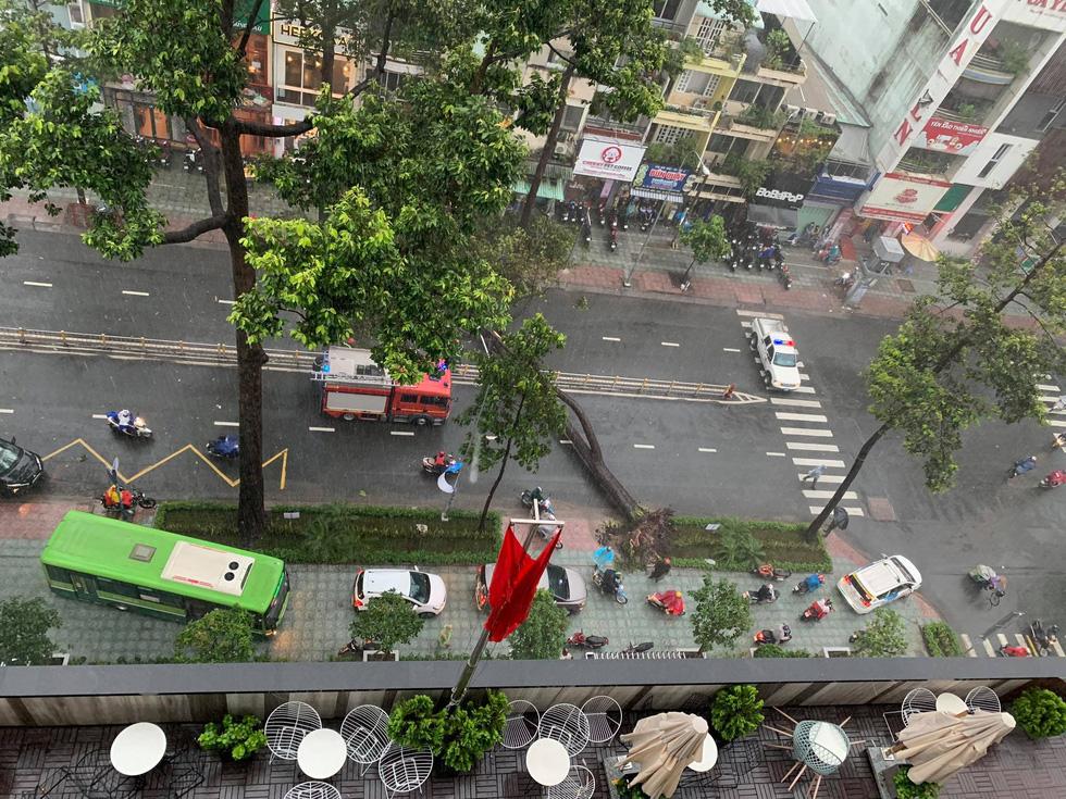 Cây bật gốc đổ ngang đường Nguyễn Tri Phương làm 1 người bị thương, ngập và kẹt xe nhiều nơi - Ảnh 4.