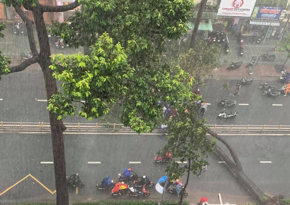 Cây bật gốc đổ ngang đường Nguyễn Tri Phương làm 1 người bị thương, ngập và kẹt xe nhiều nơi - Ảnh 2.
