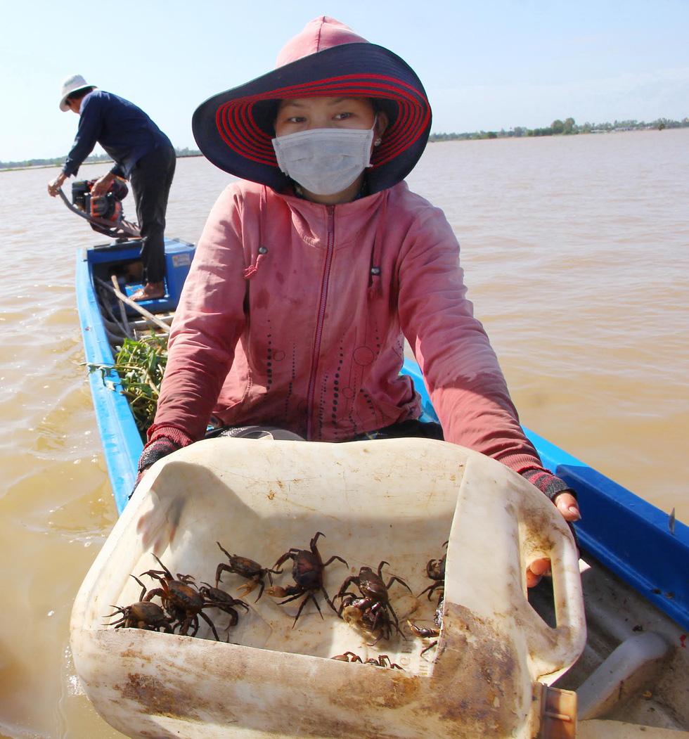 Đồng bằng sông Cửu Long lo đói lũ - Ảnh 2.