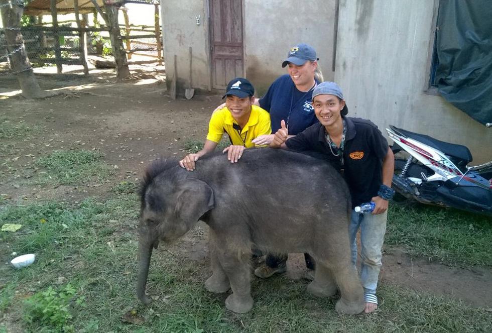 Hành trình kỳ diệu của voi Jun và Gold - Ảnh 7.