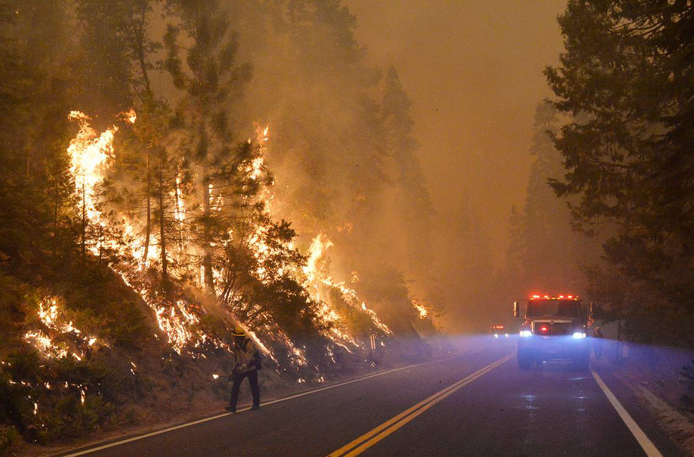 State of California declared a state of emergency in 5 counties because of wildfires - Photo 3.