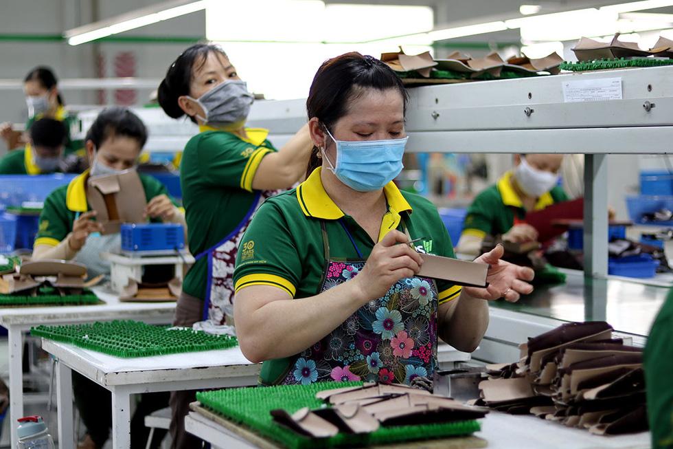 Bộ trưởng Mai Tiến Dũng nói về thương hiệu quốc gia Việt Nam và hậu trường chống dịch khác WHO - Ảnh 1.