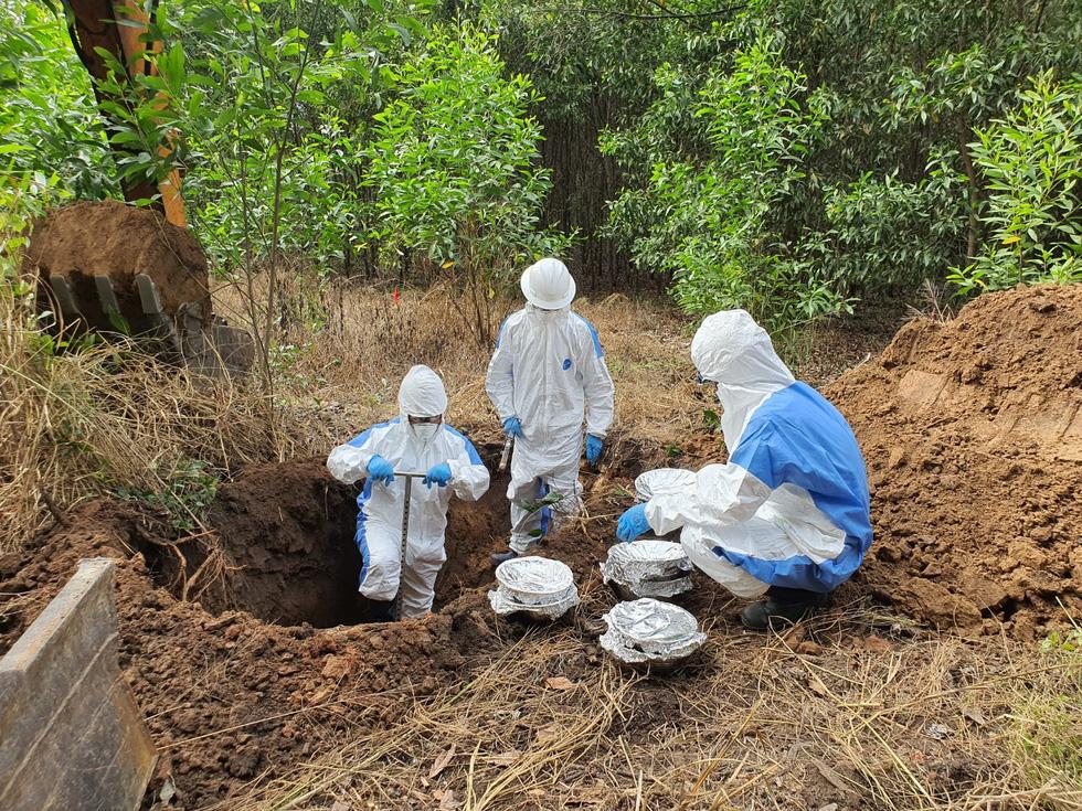 Công bố quy trình làm sạch dioxin ở sân bay Biên Hòa - Ảnh 8.