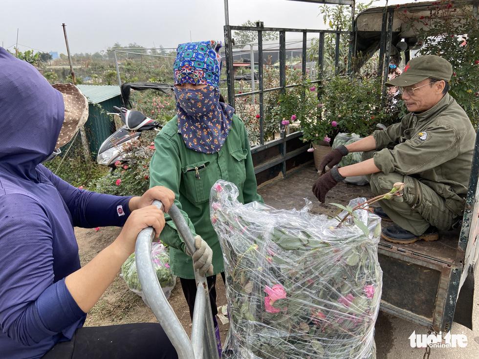 Tấp nập buôn bán, làng trồng hoa Hạ Lôi gỡ gạc sau lần bị phong tỏa - Ảnh 1.