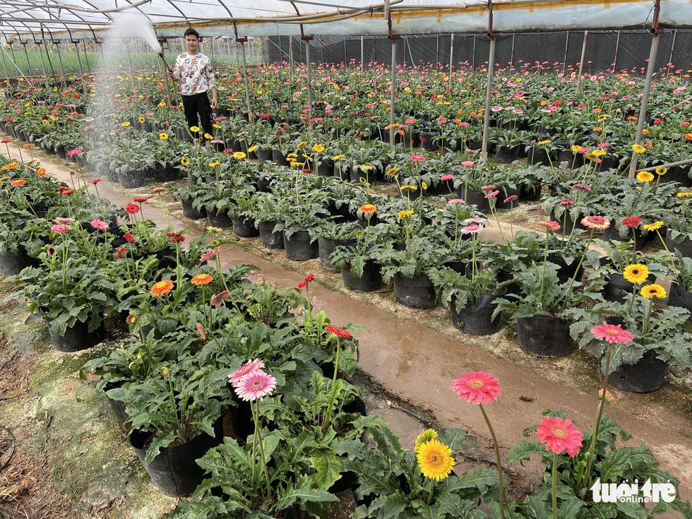 Tấp nập buôn bán, làng trồng hoa Hạ Lôi gỡ gạc sau lần bị phong tỏa - Ảnh 5.