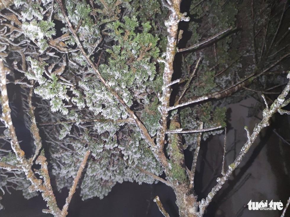 Băng giá phủ trắng Cao Bằng, Lạng Sơn - Ảnh 8.
