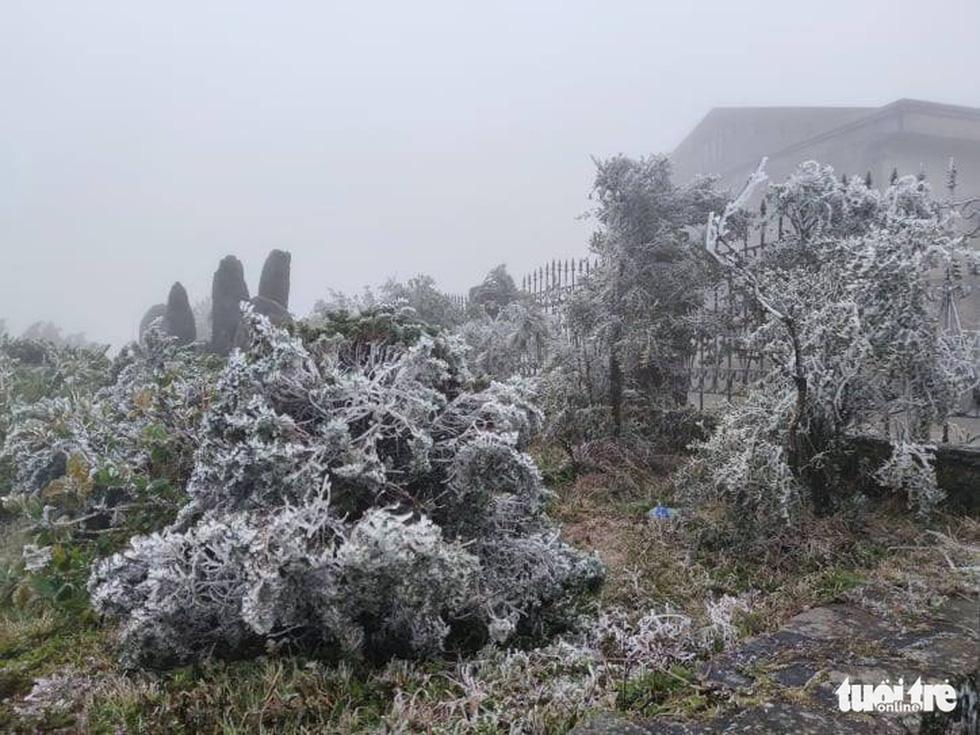 Băng giá phủ trắng Cao Bằng, Lạng Sơn - Ảnh 10.