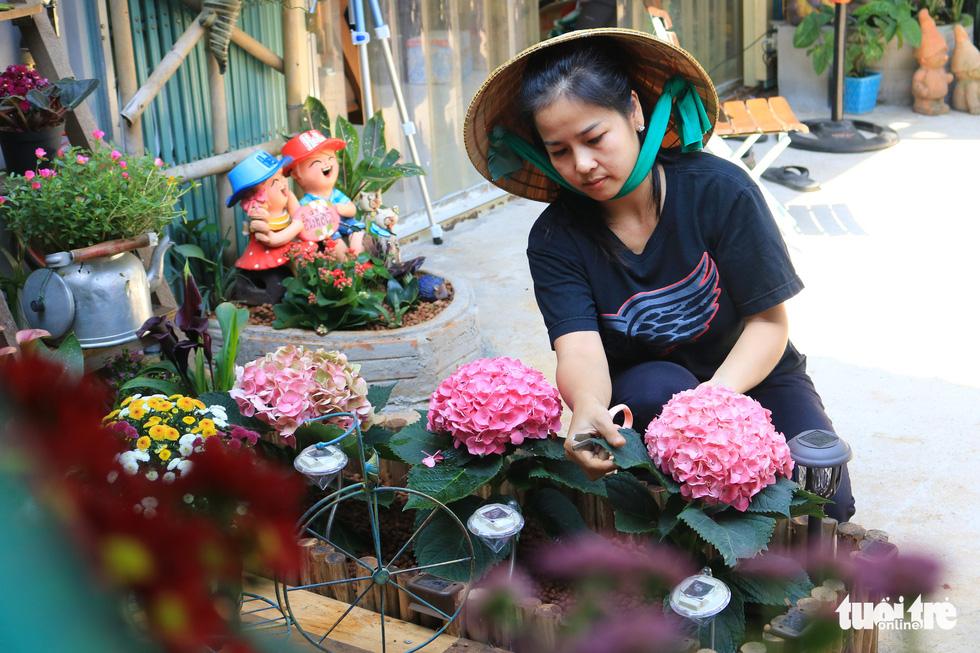 Khu vườn mini giữa lòng Sài Gòn - Ảnh 3.