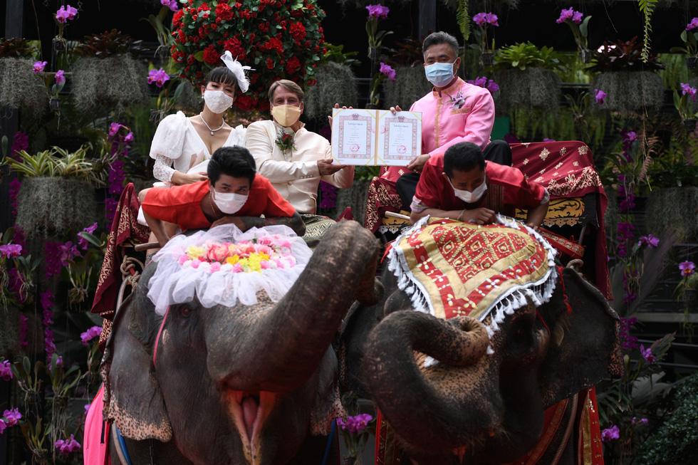 52 cặp đôi Thái làm đám cưới trên lưng voi vào ngày Lễ tình nhân - Ảnh 1.