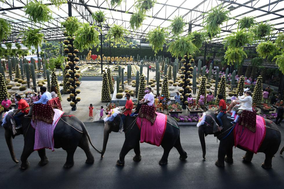 52 cặp đôi Thái làm đám cưới trên lưng voi vào ngày Lễ tình nhân - Ảnh 2.