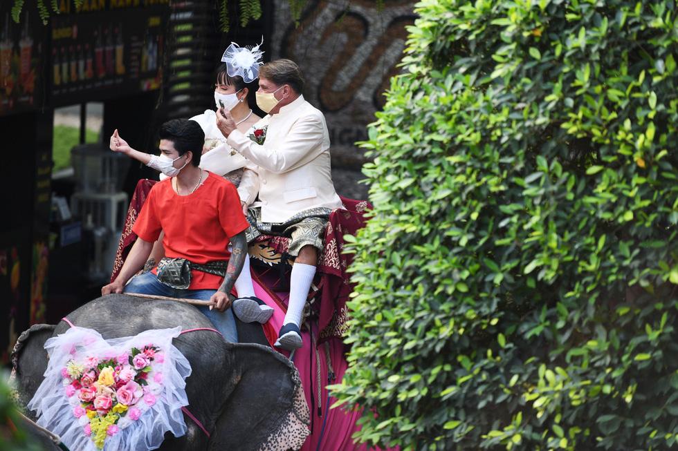 52 cặp đôi Thái làm đám cưới trên lưng voi vào ngày Lễ tình nhân - Ảnh 4.