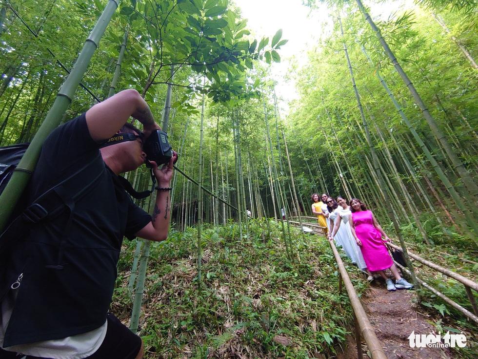 Giữ rừng trúc hoang sơ như tiên cảnh, đón du khách để đổi đời dân bản - Ảnh 5.