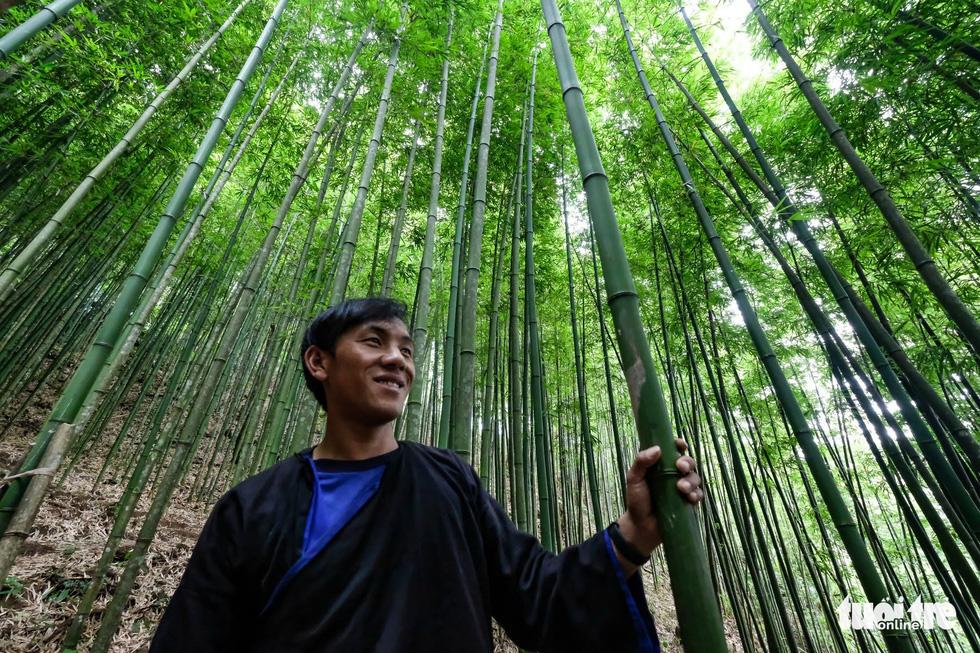 Giữ rừng trúc hoang sơ như tiên cảnh, đón du khách để đổi đời dân bản - Ảnh 4.