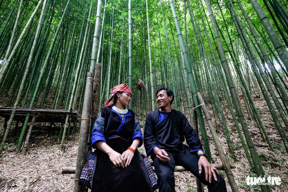 Giữ rừng trúc hoang sơ như tiên cảnh, đón du khách để đổi đời dân bản - Ảnh 1.