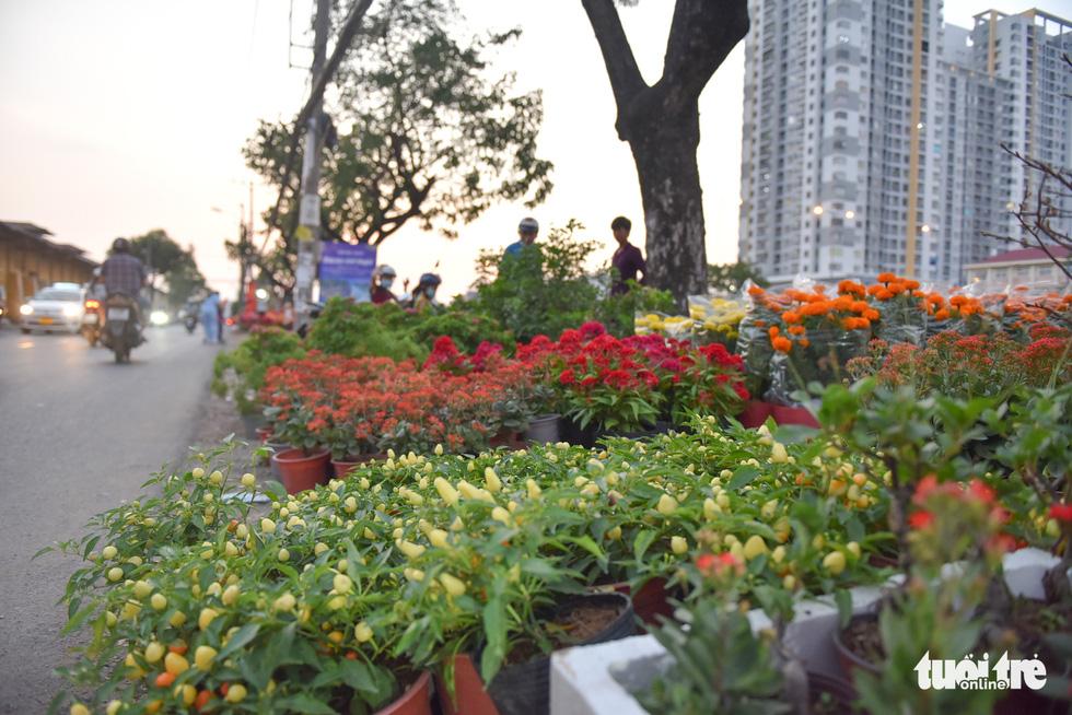 Thuyền hoa cập Bến Bình Đông chở tết đến Sài Gòn - Ảnh 11.