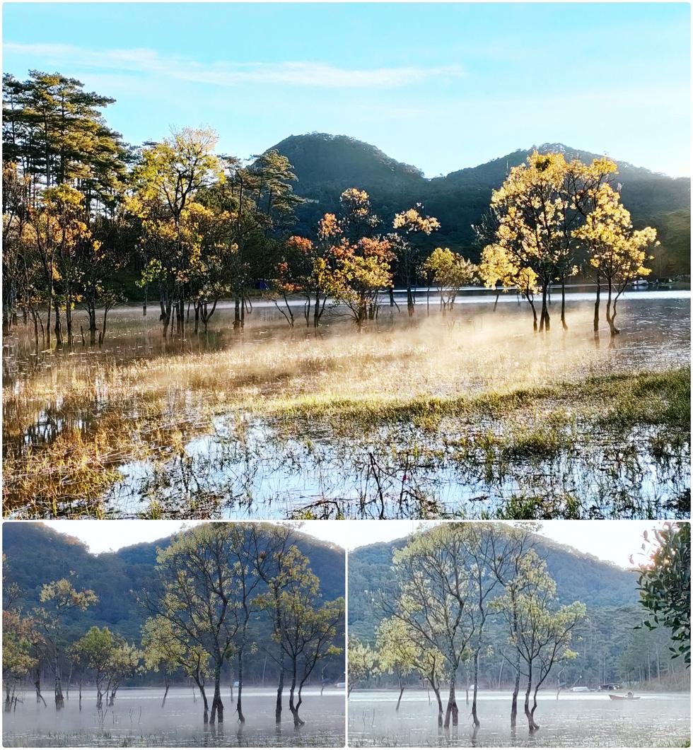 Ngôi làng rực rỡ hoa đào ở Lâm Đồng qua ống kính OPPO Reno5 - Ảnh 15.