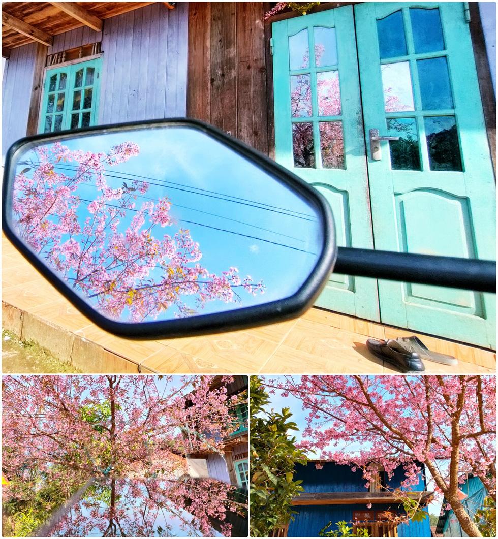 Ngôi làng rực rỡ hoa đào ở Lâm Đồng qua ống kính OPPO Reno5 - Ảnh 4.