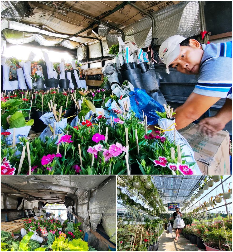 Vườn hoa Sa Đéc tết năm COVID thứ hai qua ống kính OPPO Reno5 - Ảnh 5.