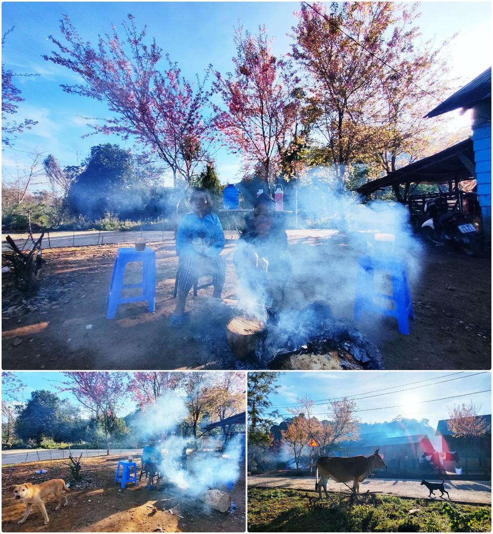 Ngôi làng rực rỡ hoa đào ở Lâm Đồng qua ống kính OPPO Reno5 - Ảnh 6.