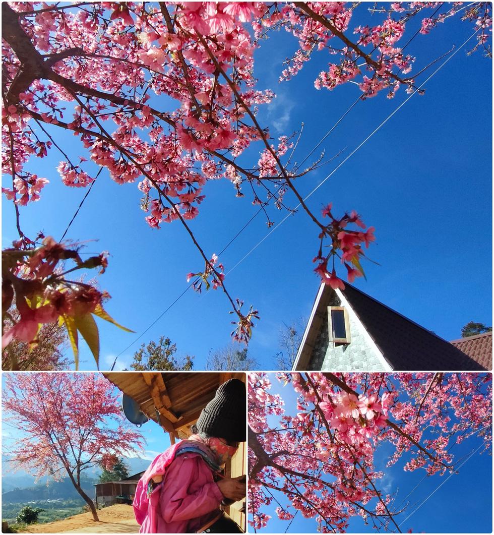 Ngôi làng rực rỡ hoa đào ở Lâm Đồng qua ống kính OPPO Reno5 - Ảnh 10.
