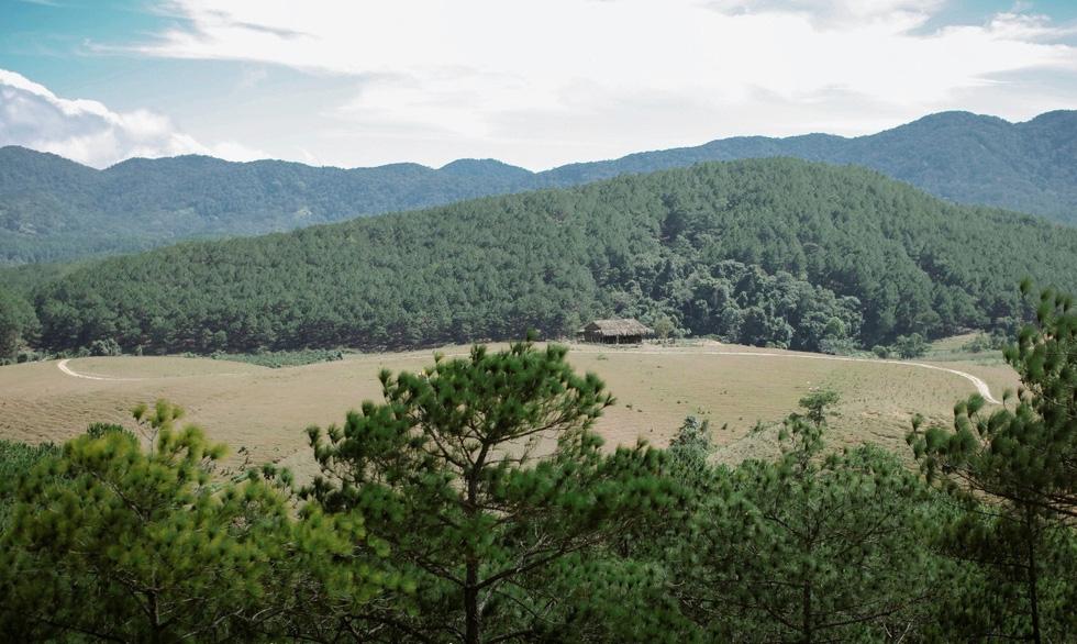 Phim về Trịnh Công Sơn có kinh phí 50 tỉ đồng, từng sập bối cảnh vì mưa gió - Ảnh 2.