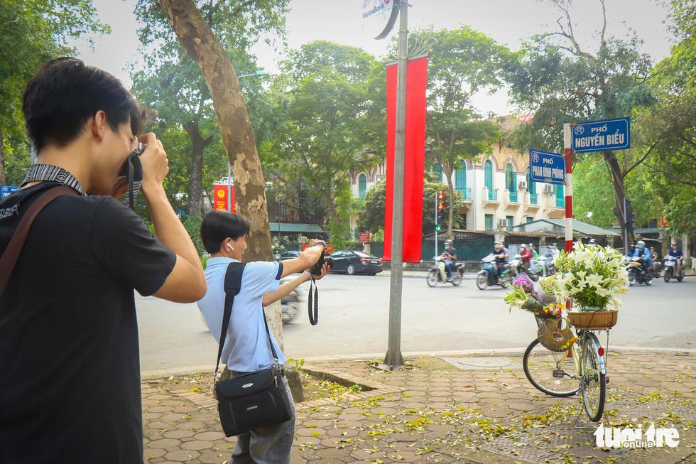 Con đường đẹp nhất Hà Nội rực vàng mùa sấu thay lá - Ảnh 5.