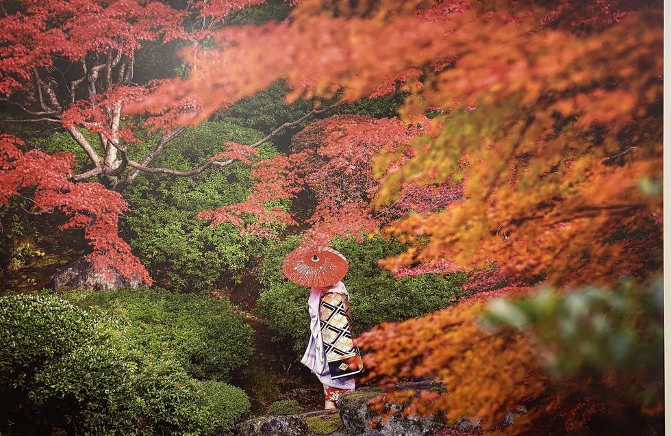 Khoảnh khắc bí ẩn các Maiko Nhật Bản qua khung hình đẹp hút hồn của nhiếp ảnh gia Pháp - Ảnh 4.