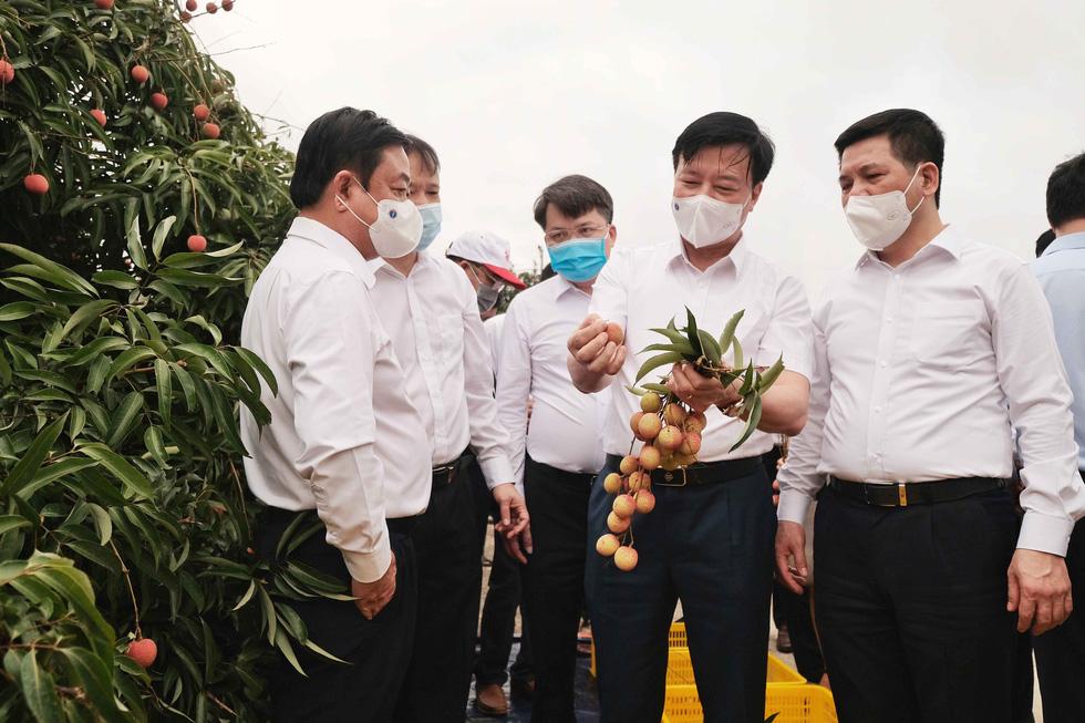 Bộ trưởng Lê Minh Hoan: Vải em là vải vườn nhà. Em là con gái Thanh Hà xứ Đông - Ảnh 1.