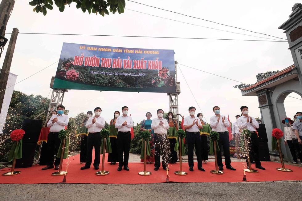 Bộ trưởng Lê Minh Hoan: Vải em là vải vườn nhà. Em là con gái Thanh Hà xứ Đông - Ảnh 2.