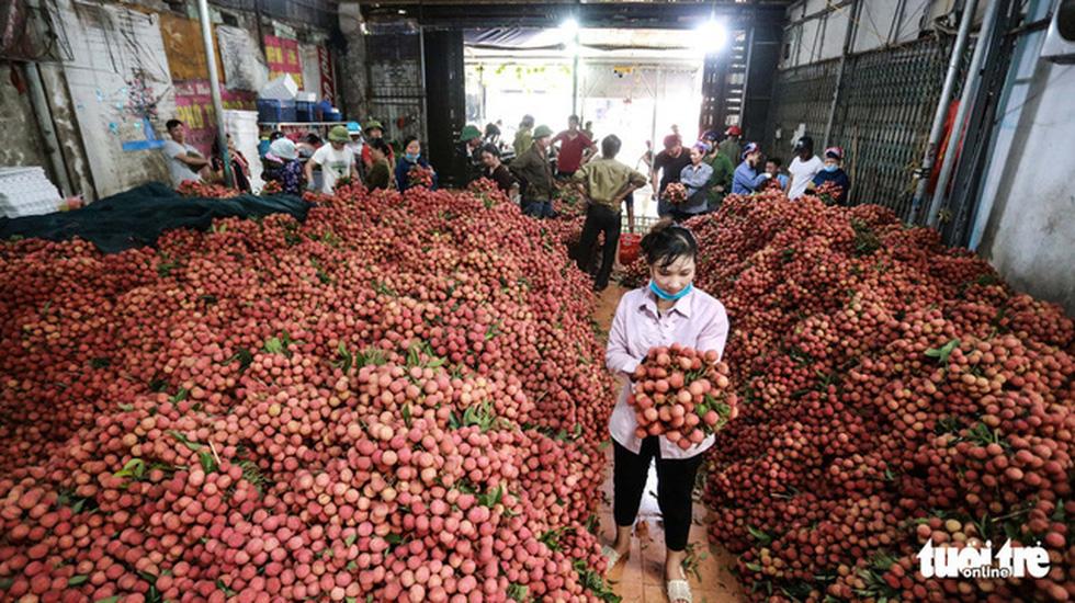 CẬP NHẬT COVID-19 ngày 19-5: Thành phố Bắc Giang giãn cách xã hội từ 15h - Ảnh 11.