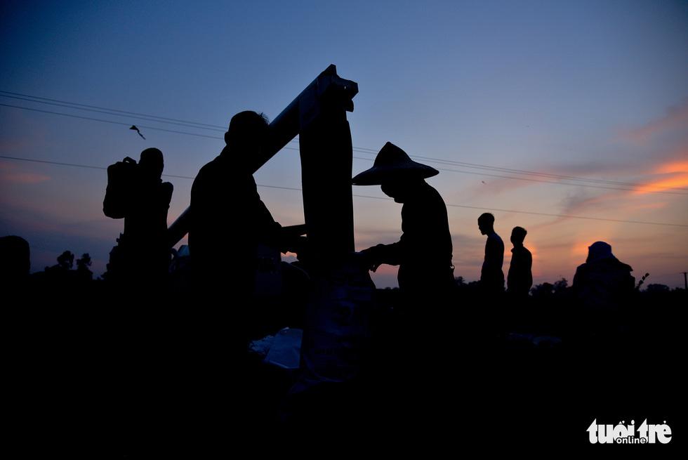 Tháng năm mùa gặt về, nông dân 'đội nắng' ra đồng thu hoạch lúa - Ảnh 2.