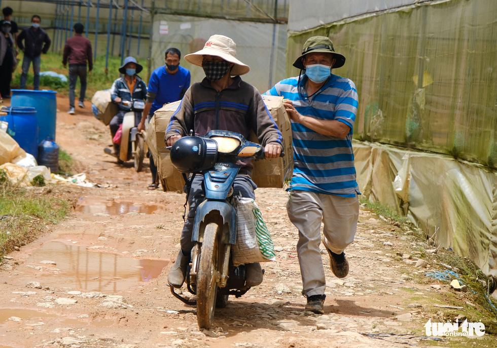 Người Đà Lạt hào phóng, tặng Sài Gòn nguyên vườn rau - Ảnh 9.