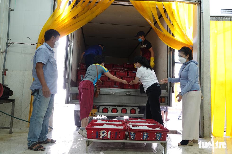 Người Đà Nẵng gửi 7 tấn cá tươi tiếp sức Sài Gòn chống dịch - Ảnh 1.